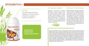 Vision. Верстка и дизайн фирменного буклета
