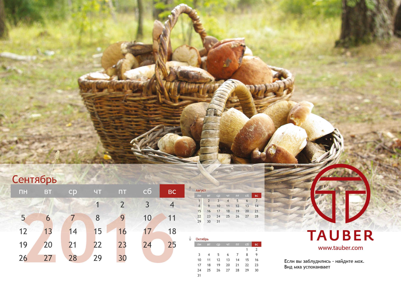 TAUBER. Дизайн фирменного календаря
